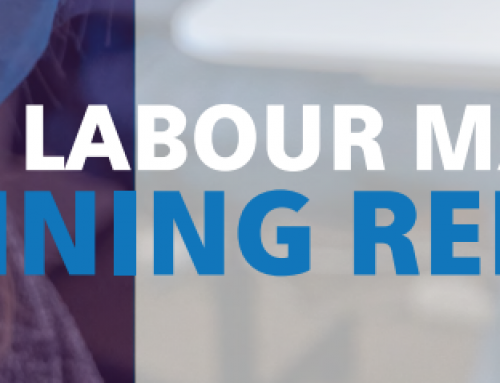Niagara Workforce Planning Board Local Labour Market Planning Report 2020-2021