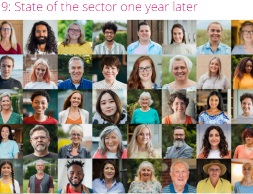 COVID 19: State of the Ontario Nonprofit Sector One Year Later